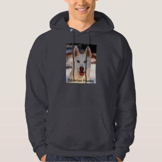 Husky siberiano blanco en el suéter con capucha