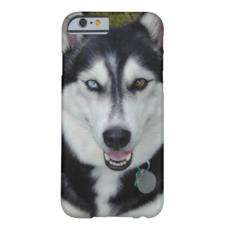 husky siberiano del caso del iPhone 6