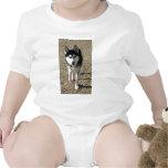 ¡Husky siberiano hermoso! Camisetas