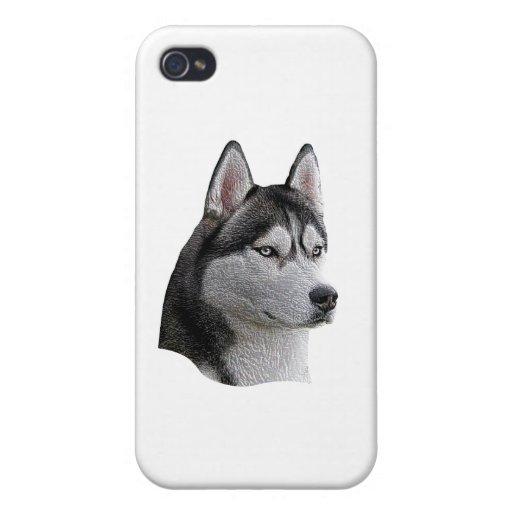 Husky siberiano - imagen estilizada - añada su tex iPhone 4 fundas