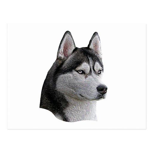 Husky siberiano - imagen estilizada - añada su tex postales