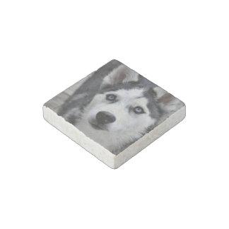 Husky siberiano imán de piedra