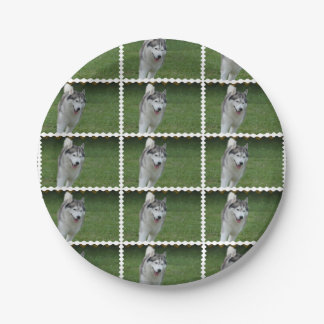 Husky siberiano lindo plato de papel de 7 pulgadas