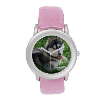 Husky siberiano lindo relojes de pulsera