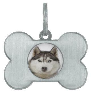 """""""Husky siberiano """" Placa De Mascota"""