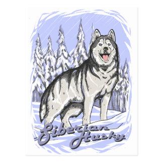 Husky siberiano tarjetas postales