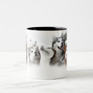 Husky siberiano taza dos tonos