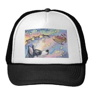 Husky Sleigh Dogs Mesh Hat