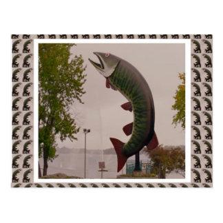 Husky The Muskie Fish  Roadside Show ON Canada Postcard
