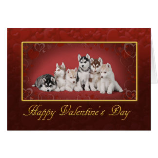 Huskys Valentine's day Card