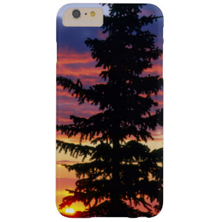 HUSTON PARK WILDERNESS, WYOMING. USA. Spruce Barely There iPhone 6 Plus Case