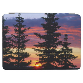 HUSTON PARK WILDERNESS, WYOMING. USA. Spruce iPad Air Cover