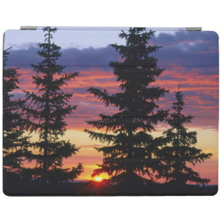HUSTON PARK WILDERNESS, WYOMING. USA. Spruce iPad Cover