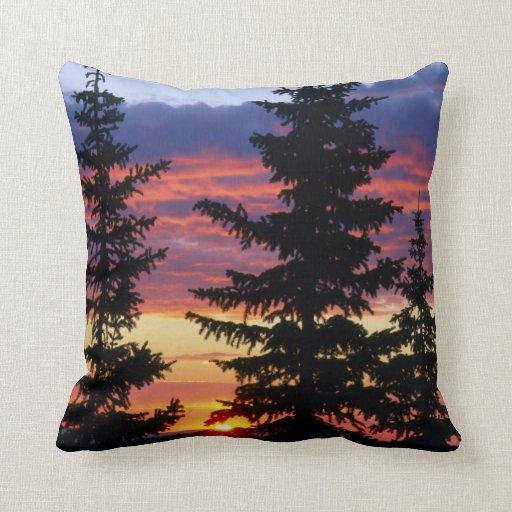 HUSTON PARK WILDERNESS, WYOMING. USA. Spruce Pillow