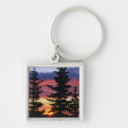 HUSTON PARK WILDERNESS, WYOMING. USA. Spruce Silver-Colored Square Keychain