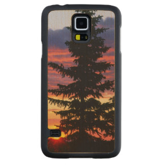 HUSTON PARK WILDERNESS, WYOMING. USA. Spruce Carved® Maple Galaxy S5 Slim Case