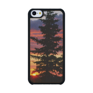 HUSTON PARK WILDERNESS, WYOMING. USA. Spruce Carved® Maple iPhone 5C Case