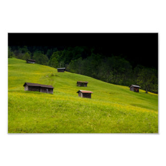 Huts in the Austrian Alps on a Fresh Green Meadow Poster