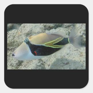 Huymuhumunukunukuapua'a Hawaii State Fish Square Sticker