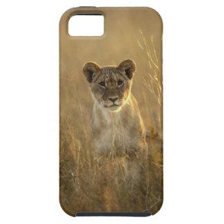 Hwange National Park, Zimbabwe. iPhone 5 Cases