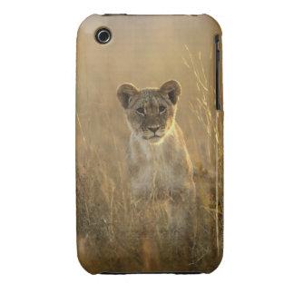 Hwange National Park, Zimbabwe. Case-Mate iPhone 3 Cases