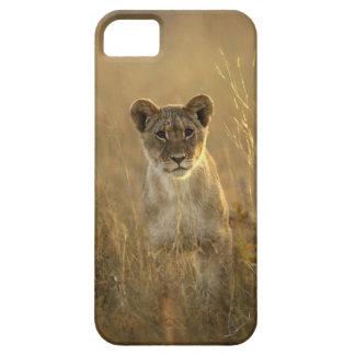Hwange National Park, Zimbabwe. iPhone 5 Case