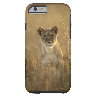 Hwange National Park, Zimbabwe. Tough iPhone 6 Case