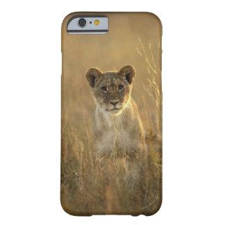 Hwange National Park, Zimbabwe. Barely There iPhone 6 Case