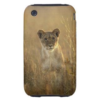 Hwange National Park, Zimbabwe. Tough iPhone 3 Covers