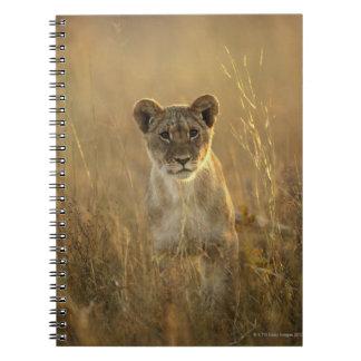 Hwange National Park, Zimbabwe. Spiral Notebook
