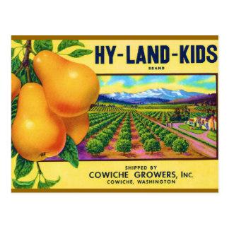 Hy-Land-Kids Pears Post Card