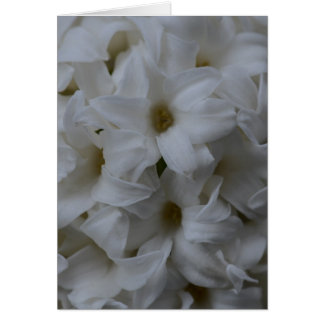 Hyacint Card