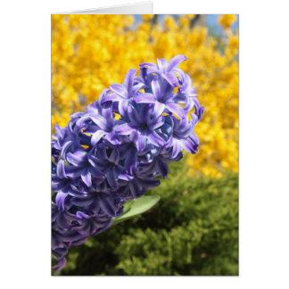 Hyacinth and Forsythia Greeting Card