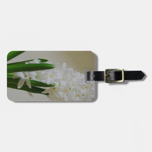 Hyacinth Bag Tags