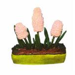Hyacinth Cake Acrylic Cut Out