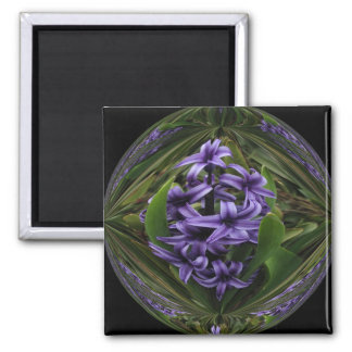 Hyacinth Candy Square 2 Inch Square Magnet