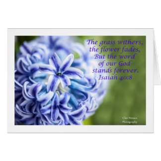 Hyacinth Flower with Scripture Card