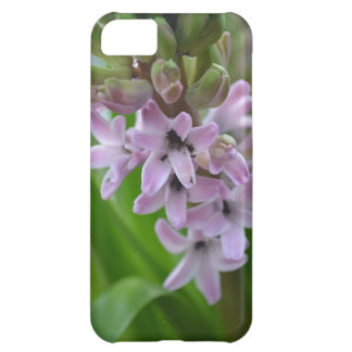 Hyacinth iPhone Case iPhone 5C Cover