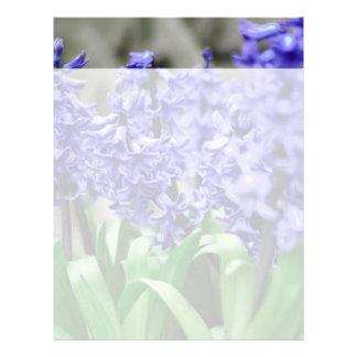 Hyacinth Letterhead