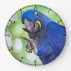 Hyacinth Macaw Bird Large Clock