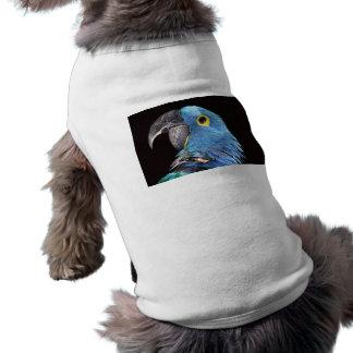 Hyacinth Macaw Dog Clothes