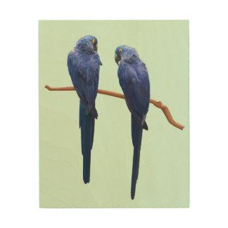 Hyacinth Macaw Duo Wooden Wall Art