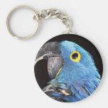 Hyacinth Macaw Key Chains