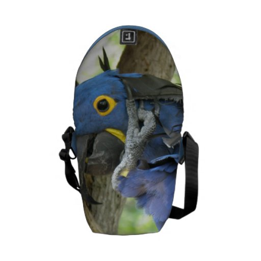 Hyacinth Macaw Messenger Bags