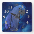 Hyacinth Macaw Square Wall Clock