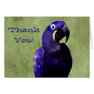 Hyacinth Macaw Thank You Notecard
