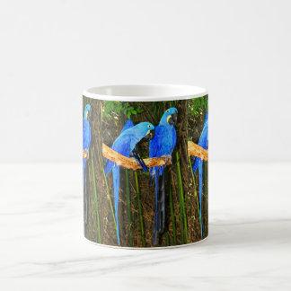 Hyacinth Macaws Coffee Mugs