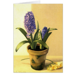 Hyacinth Pot Cards