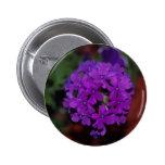 Hyacinth, Purple Pinback Buttons