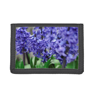 Hyacinth Trifold Wallet